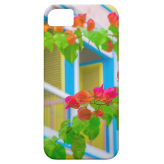 Colored Flowers in Front ot Windows House iPhone SE/5/5s Case