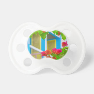 Colored Flowers in Front ot Windows House Pacifier