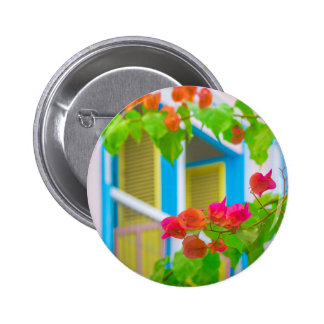 Colored Flowers in Front ot Windows House Pinback Button