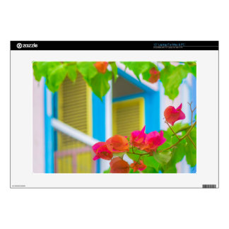 Colored Flowers in Front ot Windows House Skins For Laptops