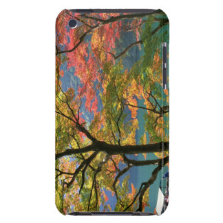 Colored Leaves iPod Touch Covers