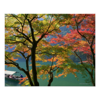 Colored Leaves Poster