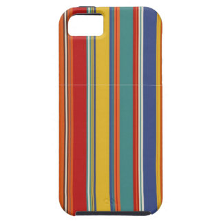 Colored Stripes iPhone 5 Case