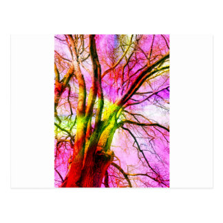 colored tree postcard