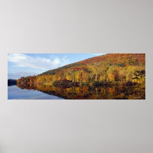 Colores 2 del otoño póster