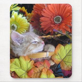 Colores anaranjados y flores del otoño del ~ del g tapetes de ratones