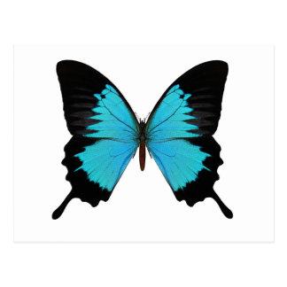 Colores azules y negros brillantes de la original tarjetas postales