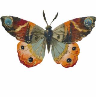 Colores bonitos del otoño de la mariposa de monarc fotoescultura vertical