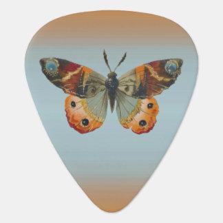 Colores bonitos del otoño de la mariposa de púa de guitarra