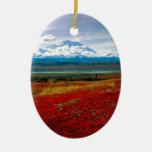 Colores brillantes del parque de Denali Alaska Adorno Navideño Ovalado De Cerámica