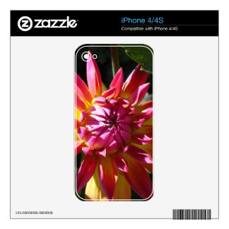 Colores brillantes iPhone 4S skins