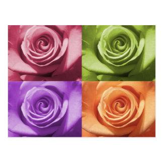 Colores color de rosa tarjetas postales