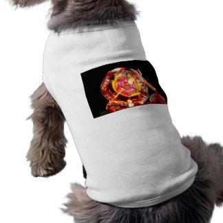 Colores de giro del paseo justo rojos y amarillos camisetas de perro