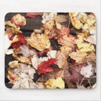 Colores de la caída alfombrillas de ratón