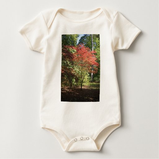 Colores de la caída body para bebé