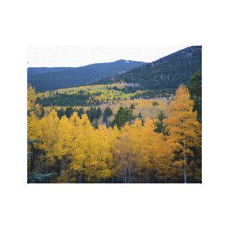 Colores de la caída de las montañas de Colorado Impresiones En Lona