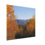 Colores de la caída en las montañas; Ningún texto Impresión En Lienzo Estirada