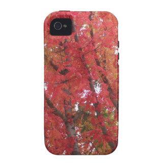 Colores de la caída en Napa, California iPhone 4/4S Funda
