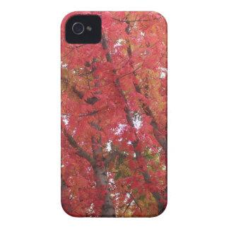 Colores de la caída en Napa, California iPhone 4 Cobertura