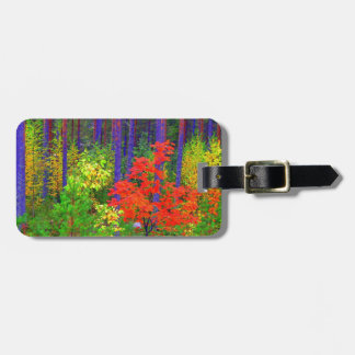 Colores de la caída etiquetas maleta