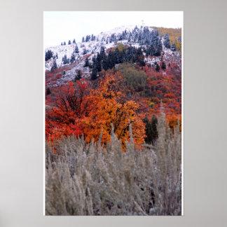 Colores de la caída Nevado Póster