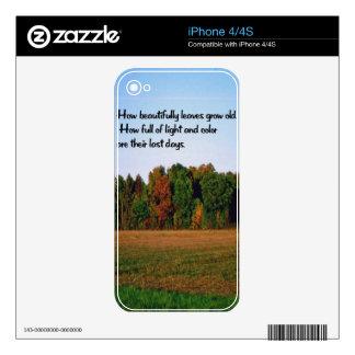 Colores de la caída, otoño iPhone 4 calcomanía