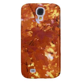 Colores de la caída - todo el naranja