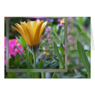 Colores de la primavera tarjeta pequeña