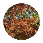 colores de las hojas de otoño