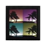 Colores de Miami Caja De Joyas