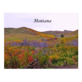Colores de Mountian, Montana Tarjeta Postal