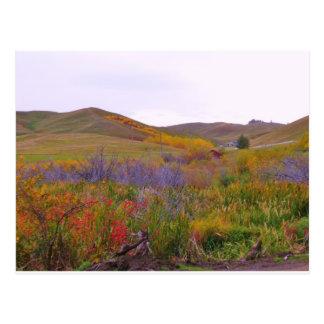Colores de Mountian Postal