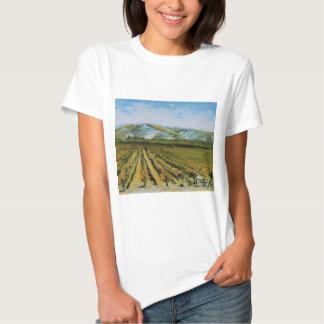 Colores de Napa Valley, país vinícola California Playera