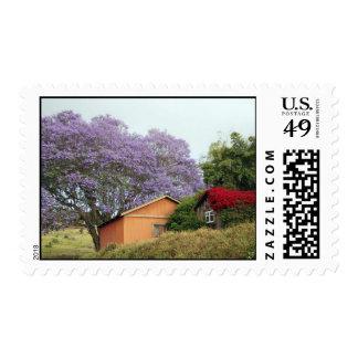 Colores de rural sellos