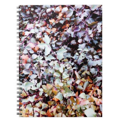 Colores del cuaderno del otoño