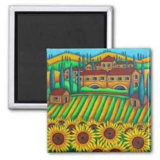 Colores del imán de Toscana