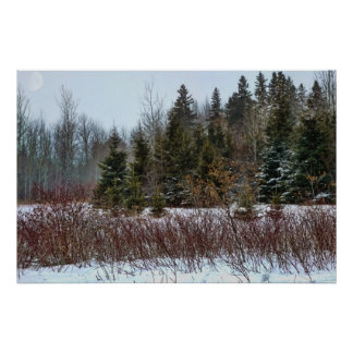 Colores del invierno póster