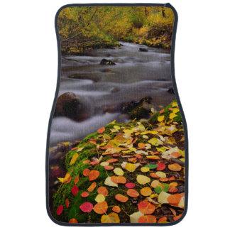 Colores del otoño a lo largo de la cala de McGee Alfombrilla De Coche
