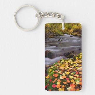 Colores del otoño a lo largo de la cala de McGee Llaveros