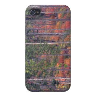 Colores del otoño de bosques en la cascada 5 iPhone 4 cárcasas