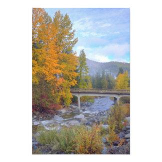 Colores del otoño de bosques en la cascada fotografías