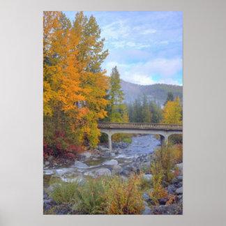 Colores del otoño de bosques en la cascada poster