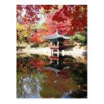 Colores del otoño de Seul Postales
