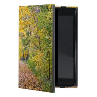 Colores del otoño en el parque de estado de la iPad mini protectores