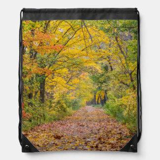 Colores del otoño en el parque de estado de la mochilas