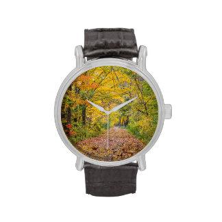 Colores del otoño en el parque de estado de la relojes