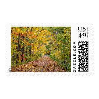 Colores del otoño en el parque de estado de la franqueo