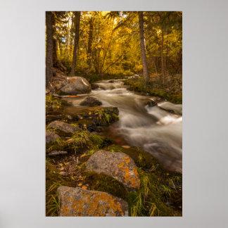 Colores del otoño en la cala de Crestone Póster