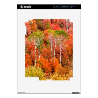 Colores del otoño en las montañas rocosas, pegatina skin para iPad 3