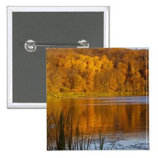 Colores del otoño en parque de estado del Maplewoo Pin Cuadrada 5 Cm